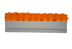 1037-007 Rosenbox LONG 20 (Grau) - 20 Infinity Rosen (Orange) - Ansicht frontal